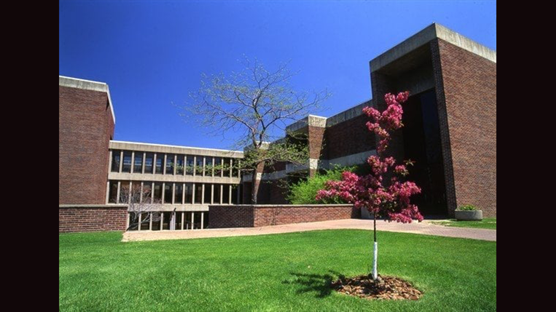 Syracuse-NY-3-credit-undergrad-course-LeMoyne-College-1900-value