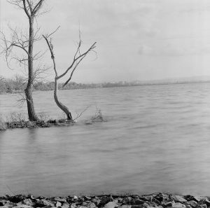 80Onondaga Lake ParkElaine Suskin Onondaga County