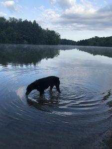 31Oswego River Lori OFarrillOswego County