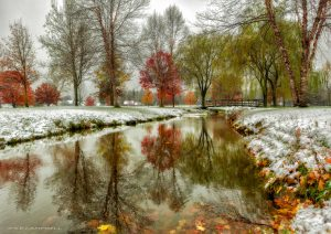 13 Snowy AutumnSusan Campbell Oneida County