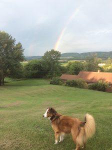 40 Gideon's rainbow Kathy Lenz Oneida County