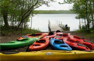 16 Paddle Beaver Lake