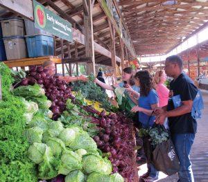 17 Ithaca Farmers Market