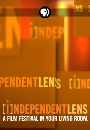 20130516_poster_indlens
