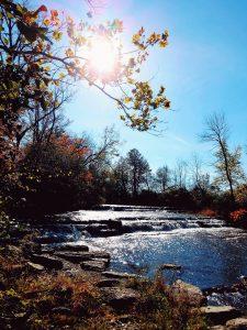 """39 """"Falling"""" into Autumn Nikki Atkinson Ontario County"""