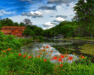 104Erie Canal beauty Marcia Bower Onondaga County