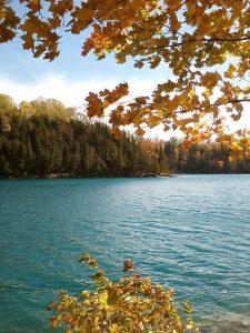 4Green Lakes State Park Darlene Stedman  Onondaga County
