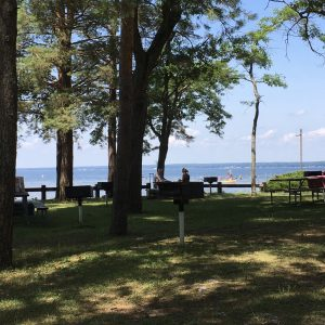 75Cooling off with shade and a lake Emily Garrett Oneida County