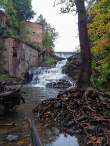 89Wells Falls (Businessman's Lunch Falls)Darlene Stedman Tompkins County
