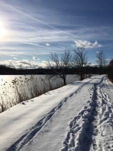 74 Erie CanalMichelle Suttoni Onondaga County