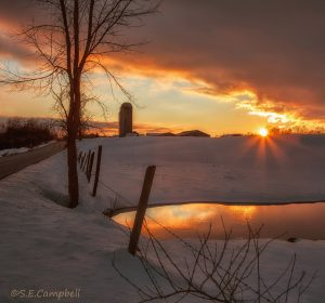 26Countryside WinterSusan Campbell Oneida County