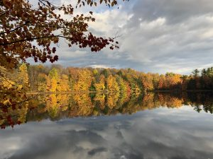 47Autumn Reflection Bridget Dolbear Oswego  County