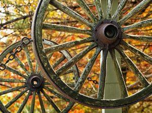19Autumn TimepieceLaurel Haller Oswego County
