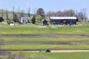 63Springtime on the farm Jeff Fitzpatrick   Onondaga County