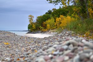 56Fall at the beach Patrick Varley Oswego County