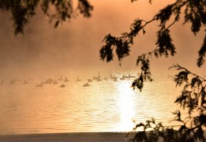 763 Degrees at SunriseCindy BevanOnondaga County