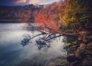 47Evening Lakeside Reflective Luminance Lev Grunstein  Onondaga County