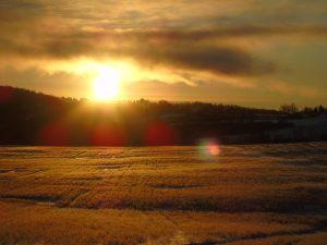 44Frozen Sunrise (-3 degrees)Monica Antone Oneida County