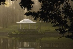 23April morning mist  Timothy Kane  Onondaga County