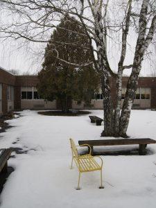 124 Snowy CourtyardDanielle Pilatzke Oneida County