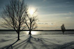 71 Lake SunEric Nessel Onondaga County