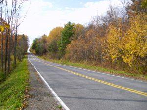 41 Late Fall, Down a Windy Road Nancy Winnie Tompkins County