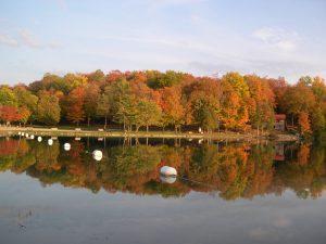 48 Green LakesCheryl Hickein Onondaga County