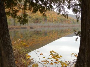 69 Labrador Pond, Tully, NYBetty Glover Cortland County