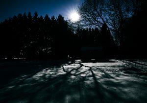 16Wolf MoonS.A. MukherjiTompkins County