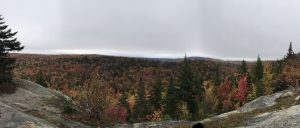 62Black Bear Mountain Summit, Old Forge, NYKelsey Jedra Herkimer County