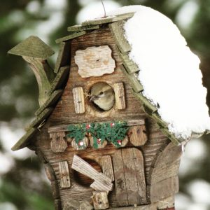 44April Snow Abode/Full HouseDonna Creedon Oneida County
