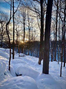 45At SunriseKate ElstadOnondaga County