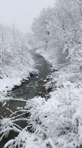 4Snow Creek Patrick OConnor Onondaga County
