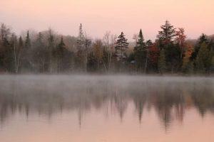 28Peaceful tranquil fog Shelli ButlerWayne County