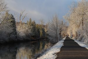 8Frosty Morning on Erie CanalLewell TroastOnondaga County