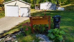 4Breath taking beautiful leavesDaniel Coleman  Cortland County