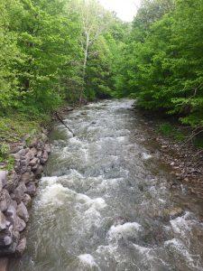 15Limestone creek ManliusJennifer Edkin Onondaga County
