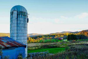 1 Autumn's Color PaletteMichelle Enright Tompkins County