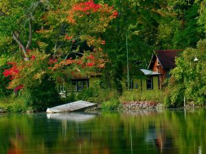 12Signs of Autumn  Michael Nanton Onondaga County