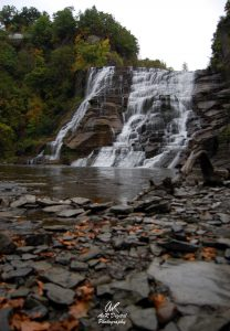 10 Season of ChangeAndrew von Rathonyi Tompkins County