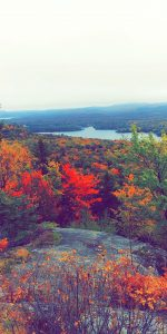 46 Bald Mountain Old Forge NYSteven J Wilczek Herkimer County