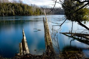 6Spring thaw at Green lakes state parkTerry Perrone Onondaga  County