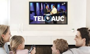 TelAuc_TV_and_Online_ (1)