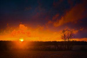 45Creation Emerging into Regeneration Darrell Nieman  Oneida County