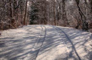 59 Tracks John Domm Wayne County