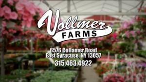 Vollmer_logo