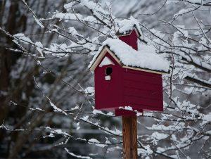 84 Winter BirdhouseRalph Ortiz Oneida County