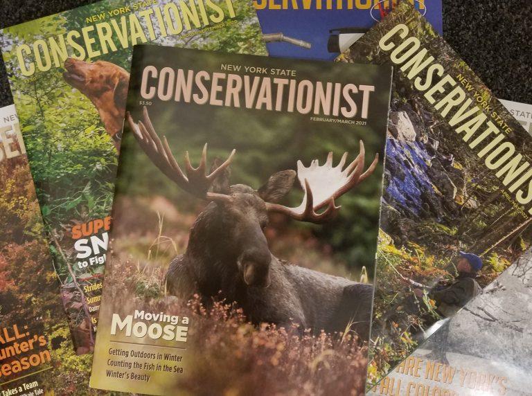 magazine, the Conservationist, Adirondacks, recycle