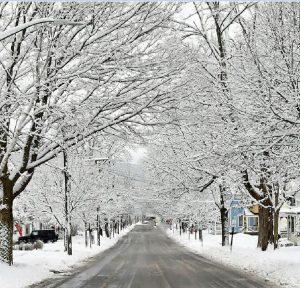 89Winter Street SceneCharlie TomasoOtsego County