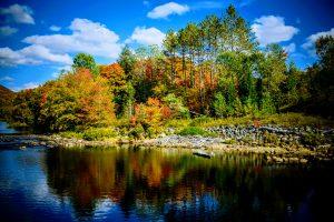 10Serenity Lisa Lynch Herkimer County